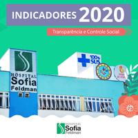 Indicadores 2020